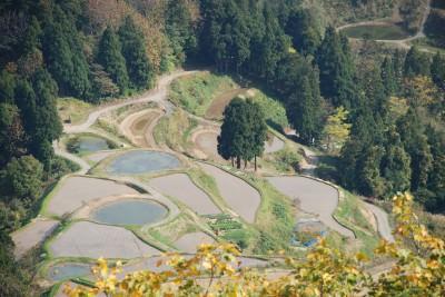Naturteiche in Japan